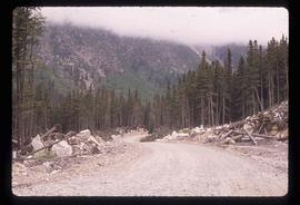 Joffre Creek - Road