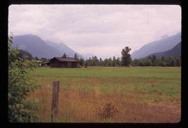 Near Pemberton - Farm