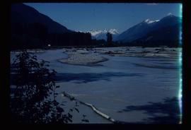 [Lillooet River?] - Wood Debris