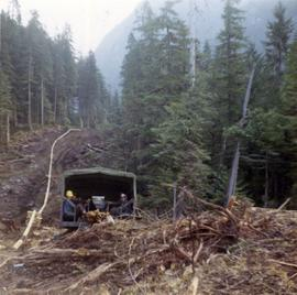 Men sitting in back of truck in forest