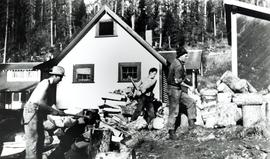 Men splitting wood for fuel used in the cookhouse