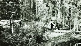 Aleza Lake Experimental Station campsite in development in 1925