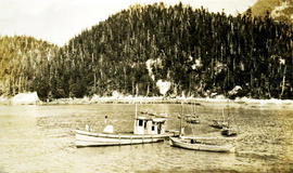 Cannery tender boats