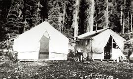 Aleza Lake Experimental Station camp in 1925
