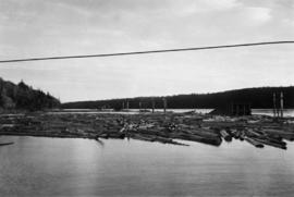 Log boom in the Fraser River at Peden Hill Sawmill