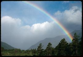 Waterton [Lakes] rainbow