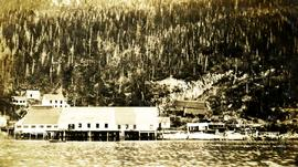 Port Nelson Cannery
