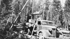 Loading raw logs onto a 'Maple Leaf' Chevrolet truck