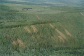 Aerial views (E 15 Mile to Rock Ck) - 15