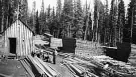 Worker in lumber yard at Peden Hill sawmill