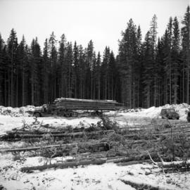 Pulpwood Logging Operations on P.T.S. X91960, Swamp Lake, Prince George Pulp and Paper Ltd.