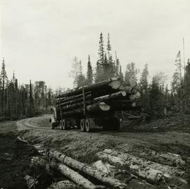 Loaded logging truck on way to log dump on Eagle Lake on East Loop Road, Aleza Lake Forest Experi...