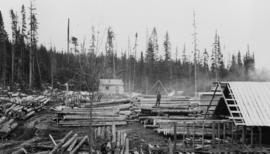 Log yard at rebuilt Peden Hill sawmill