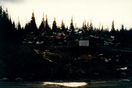 Aleza Lake Garbage Dump