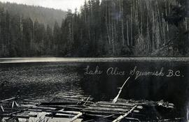 Lake Alice, Squamish, BC