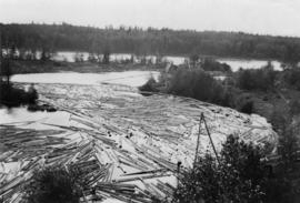 Fraser River backchannel with logs at Peden Hill sawmill