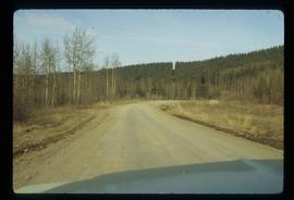 A Road in Tumbler Ridge