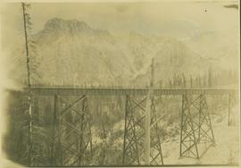Bridge at Seely Gulch