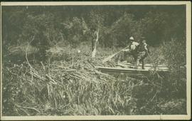 Men in Boat with Forest Slash
