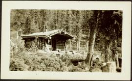 Cabin at Sayer Creek
