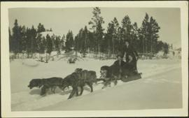 Mildred Hodges on Dogsled