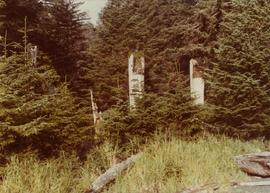 Haida totem poles on Ninstints, Anthony Island, Haida Gwaii