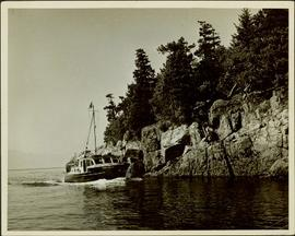 The M.S. John Antle on her rounds entering Smuggler Cove