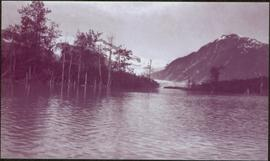 Taku River Survey - Water Scene