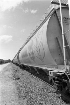 CN grain car with wheat logo in Prince Rupert