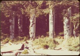 Five carved memorial poles, Ninstints, Anthony Island, Haida Gwaii, September 1977