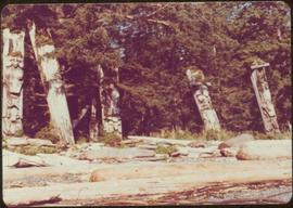 Five leaning, carved memorial poles, Ninstints, Anthony Island, Haida Gwaii, September 1977