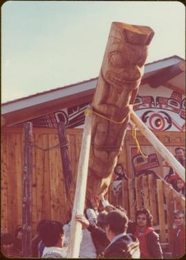 Skeena Riding tour - Totem pole being raised by unidentified men and women in front of longhouse, Kispiox, BC