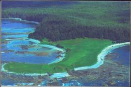 Panorama of rocky harbour surrounding a stretch of green lawn and forest on Vancouver Island, BC