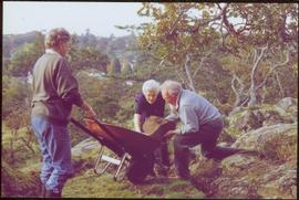 Iona Campagnolo lifting rock with unidentified man into wheelbarrow pushed by unidentified woman ...