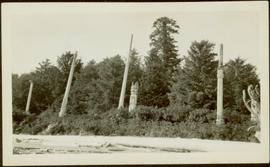 Totem poles at unknown beach on Queen Charlotte Islands, BC