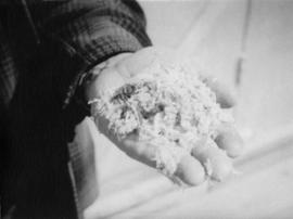 Asbestos in bare hand