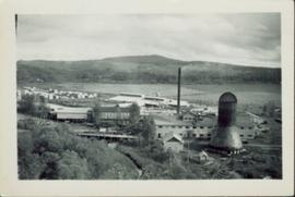Overview of Eagle Lake Sawmill