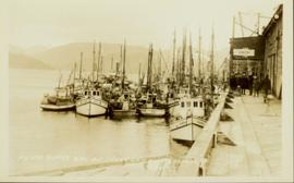 Prince Rupert halibut fleet