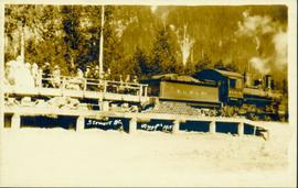 Crowd gathered around train in Stewart, BC
