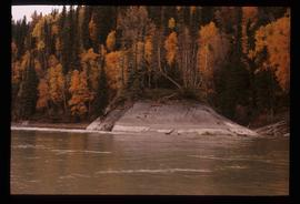 Fraser River - Small Island