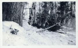 Man resting in the snow beside snowshoes