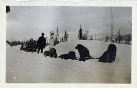 Man and dogsled team resting at a marker point