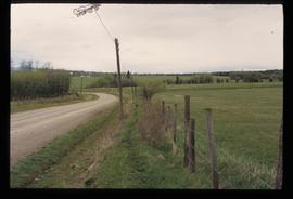 Near Grassy Plains - Road and Field