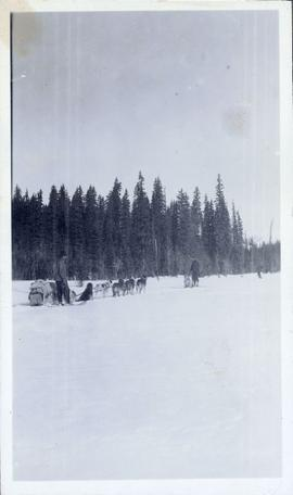 Dogsled team with musher alongside and another man and dog nearby