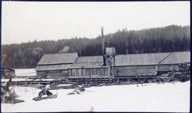 Sawmill with woodpile