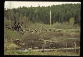 [Quesnelle Forks?] - Collapsed Wooden Structure