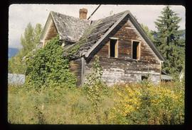 Abandoned Cabin with Ivy