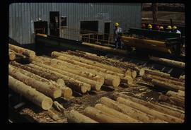 Sawmill - People and Logs