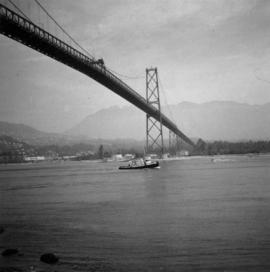 View of the Lions Gate Bridge in Vancouver, BC