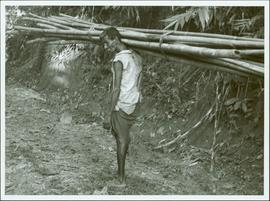 Bangladesh : Man carrying bamboo
